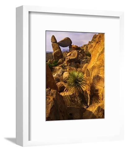 Rock Formations in Grapevine Hills, Big Bend National Park, Texas, USA-Jerry Ginsberg-Framed Art Print