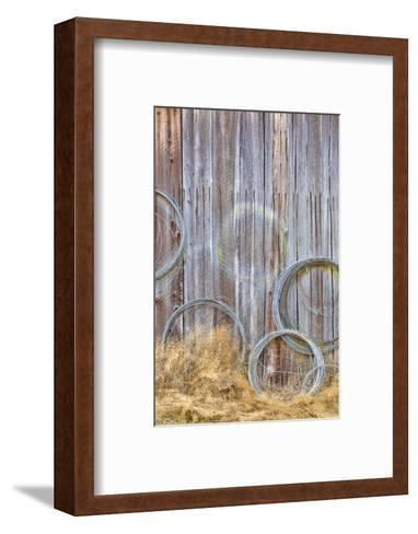 Wire Coiled on Barn Wall, Petersen Farm, Silverdale, Washington, USA-Jaynes Gallery-Framed Art Print