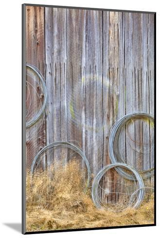 Wire Coiled on Barn Wall, Petersen Farm, Silverdale, Washington, USA-Jaynes Gallery-Mounted Photographic Print
