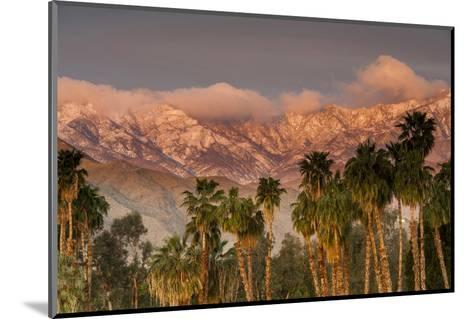 Jacinto and Santa Rosa Mountain Ranges, Palm Springs, California, USA-Richard Duval-Mounted Photographic Print