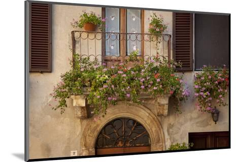 Flowers on Home in Piezna, Tuscany, Italy-Brian Jannsen-Mounted Photographic Print