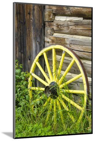 Wagon Wheel in Old Gold Town Barkersville, British Columbia, Canada-Michael DeFreitas-Mounted Photographic Print