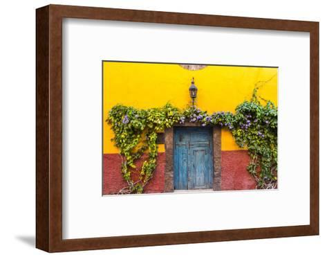 Decorative Doo on the Streets of San Miguel De Allende, Mexico-Chuck Haney-Framed Art Print