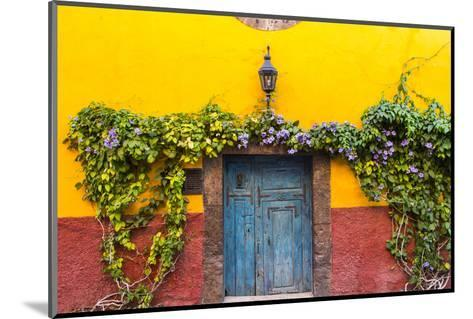 Decorative Doo on the Streets of San Miguel De Allende, Mexico-Chuck Haney-Mounted Photographic Print