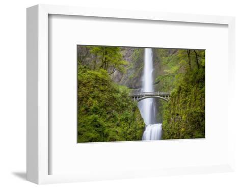 Multnomah Falls in the Columbia River Gorge Near Portland, Oregon, Usa-Brian Jannsen-Framed Art Print