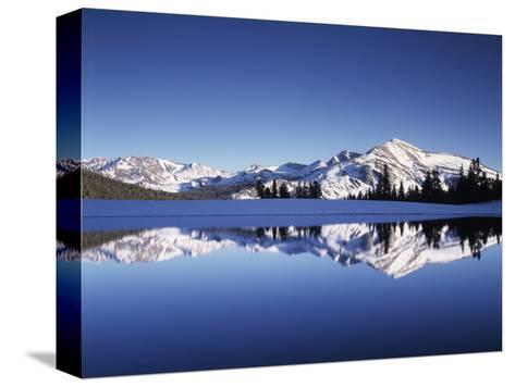 California, Sierra Nevada, Yosemite National Park, Mammoth Peak Reflect in a Tarn-Christopher Talbot Frank-Stretched Canvas Print