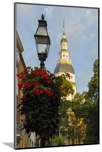Historic Maryland State House in Annapolis, Maryland-Jerry Ginsberg-Mounted Photographic Print