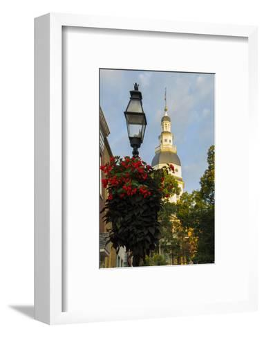 Historic Maryland State House in Annapolis, Maryland-Jerry Ginsberg-Framed Art Print