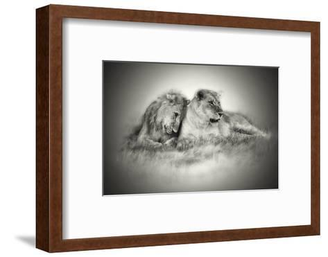 Lioness and Son Sitting and Nuzzling in Botswana Grassland, Africa-Sheila Haddad-Framed Art Print