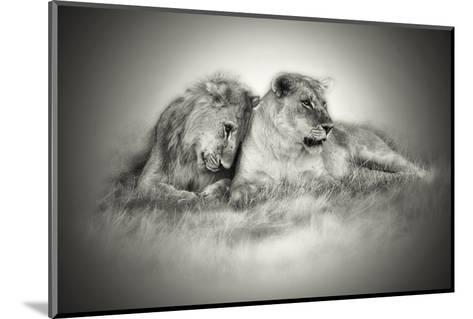 Lioness and Son Sitting and Nuzzling in Botswana Grassland, Africa-Sheila Haddad-Mounted Photographic Print