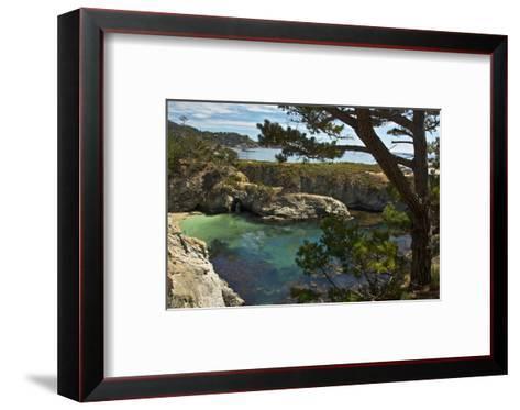 China Cove, Point Lobos State Reserve, Carmel, California, USA-Michel Hersen-Framed Art Print