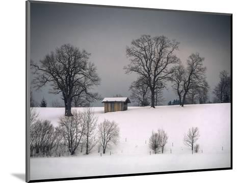 Winter Scene, Hill and Trees, Hut and Foreboding Sky-Sheila Haddad-Mounted Photographic Print