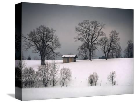 Winter Scene, Hill and Trees, Hut and Foreboding Sky-Sheila Haddad-Stretched Canvas Print