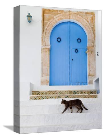 Tunisia, Sidi Bou Said, Building Detail-Walter Bibikow-Stretched Canvas Print