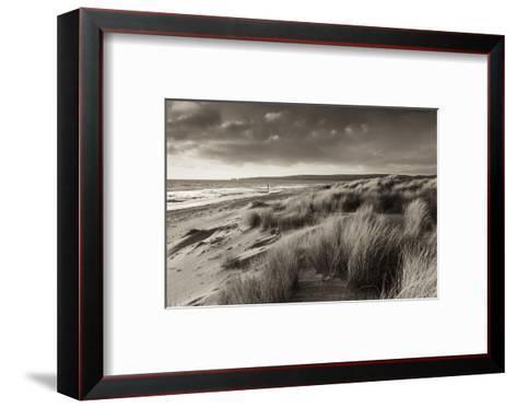 Windswept Sand Dunes on the Beach at Studland Bay, with Views Towards Old Harry Rocks, Dorset-Adam Burton-Framed Art Print