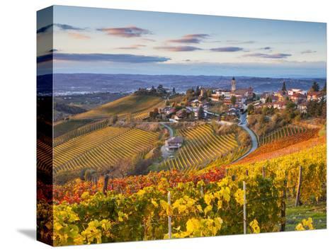 Vineyards, Treiso, Nr Alba, Langhe, Piedmont (or Piemonte or Piedmonte), Italy-Peter Adams-Stretched Canvas Print