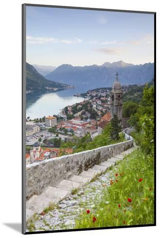 Elevated View over Kotor's Stari Grad (Old Town) and the Bay of Kotor, Kotor, Montenegro-Doug Pearson-Mounted Photographic Print