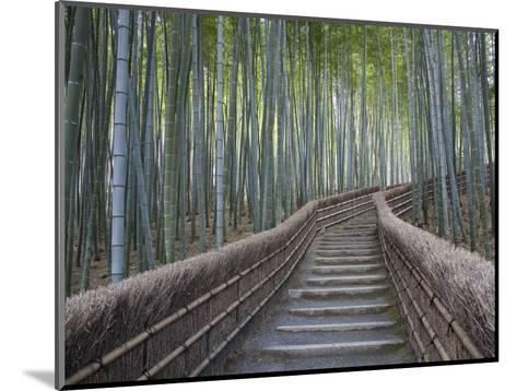 Stairway Through Bamboo Grove Above Adashino Nembutsu-Ji Temple-Brent Winebrenner-Mounted Photographic Print