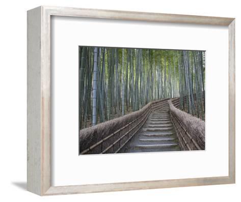 Stairway Through Bamboo Grove Above Adashino Nembutsu-Ji Temple-Brent Winebrenner-Framed Art Print