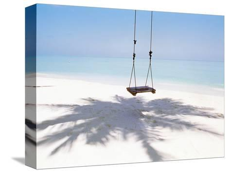 Beach Swing And Shadow of Palm Tree on Sand--Stretched Canvas Print