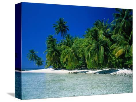 Beach Scene the Maldives--Stretched Canvas Print