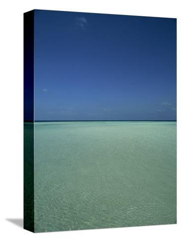 Turquoise Sea and Blue Sky, Seascape in the Maldives, Indian Ocean-Fraser Hall-Stretched Canvas Print