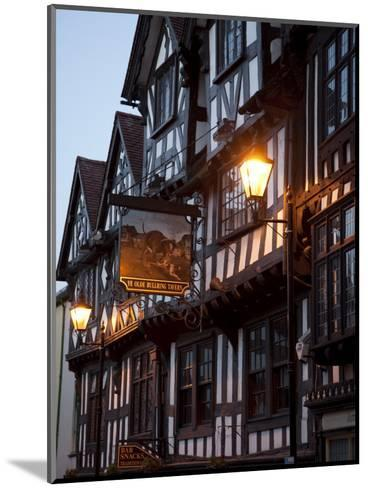 Ye Old Bullring Tavern Public House Dating from 14th Century, at Night, Ludlow, Shropshire, England-Nick Servian-Mounted Photographic Print