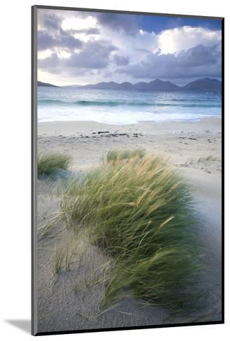 Beach at Luskentyre with Dune Grasses Blowing-Lee Frost-Mounted Photographic Print