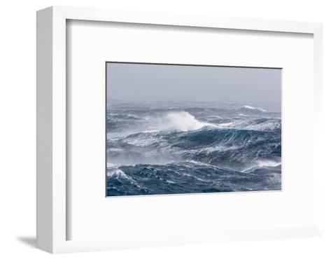 Gale Force Westerly Winds Build Large Waves in the Drake Passage, Antarctica, Polar Regions-Michael Nolan-Framed Art Print
