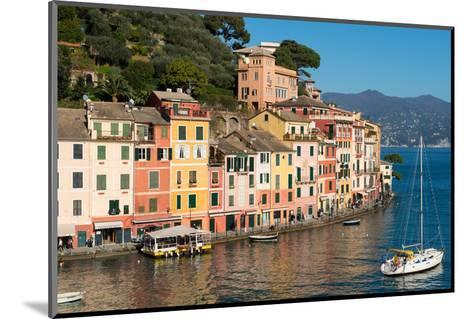 Portofino, Genova (Genoa), Liguria, Italy, Europe-Carlo Morucchio-Mounted Photographic Print