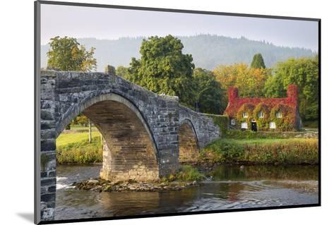 Tu Hwnt I'R Bont Tearoom and Pont Fawr (Big Bridge) in Autumn, Llanrwst, Snowdonia, Conwy, Wales-Stuart Black-Mounted Photographic Print
