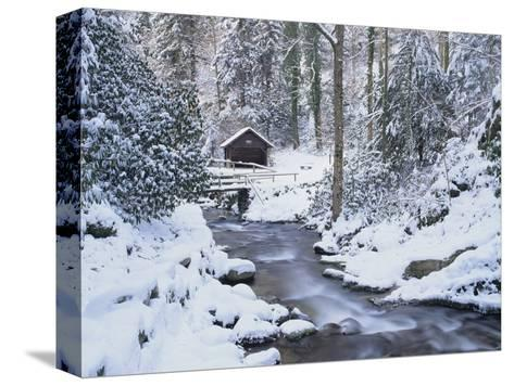 Cottage in a Forest in Winter-Marcus Lange-Stretched Canvas Print