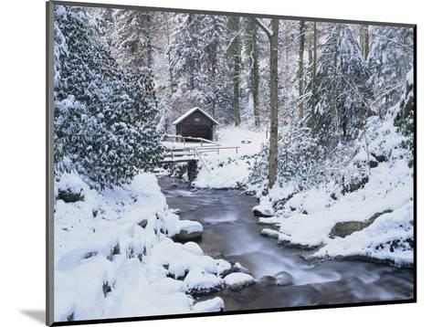 Cottage in a Forest in Winter-Marcus Lange-Mounted Photographic Print