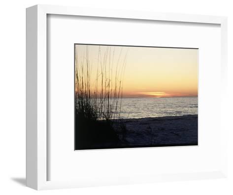 Sunset on Sanibel Island, Gulf Coast of FL-David Davis-Framed Art Print