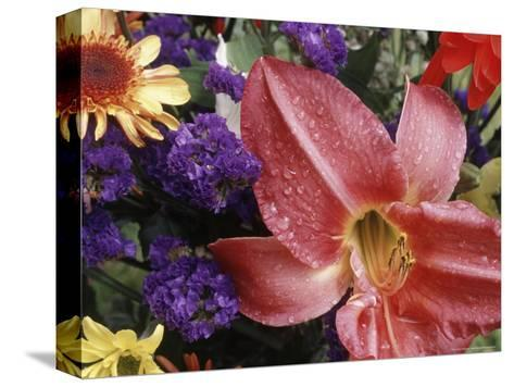 Flowers Sprinkled with Dew-Mitch Diamond-Stretched Canvas Print