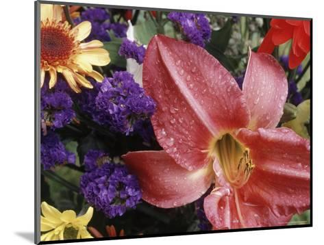 Flowers Sprinkled with Dew-Mitch Diamond-Mounted Photographic Print