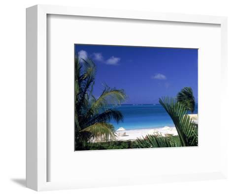 Tropical Beach, Turks and Caicos Islands-Timothy O'Keefe-Framed Art Print