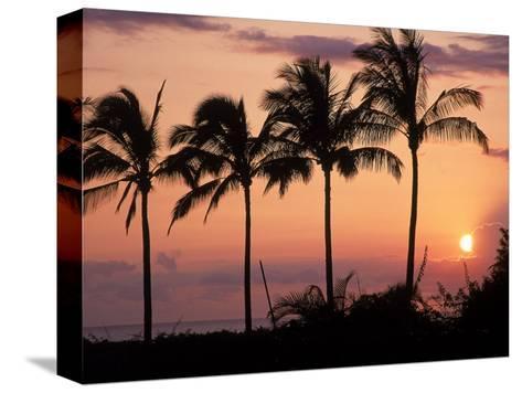 Sunset Over Kihei, Maui, Hawaii-Chris Rogers-Stretched Canvas Print