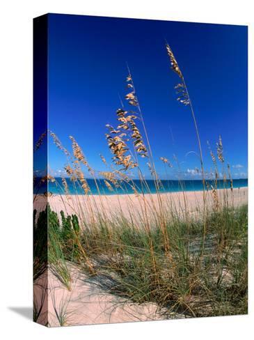 Grace Bay Beach, Turks & Caicos Islands-Timothy O'Keefe-Stretched Canvas Print