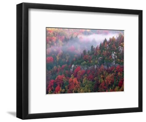 Blackwater Canyon, Wv-Robert Finken-Framed Art Print