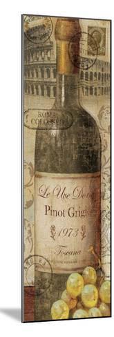 European Wines I--Mounted Premium Giclee Print