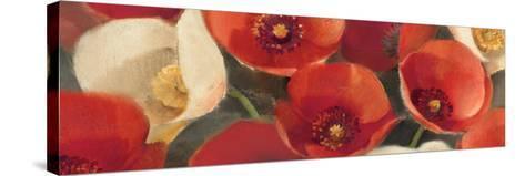 Poppies Bloom I-Albena Hristova-Stretched Canvas Print
