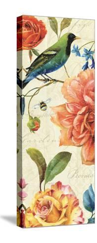 Rainbow Garden VI-Lisa Audit-Stretched Canvas Print