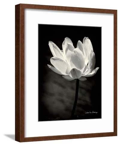 Lotus Flower X-Debra Van Swearingen-Framed Art Print