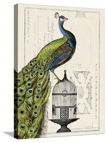 Peacock Birdcage I-Hugo Wild-Stretched Canvas Print