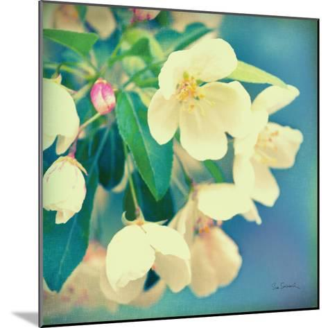 Natures Apple Blossom-Sue Schlabach-Mounted Premium Giclee Print