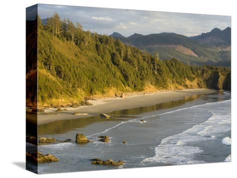 Sunset on the Beach-Sergio Ballivian-Stretched Canvas Print