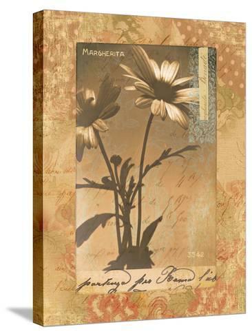 Gypsy Daisies-Hugo Wild-Stretched Canvas Print
