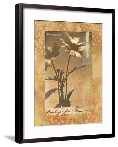 Gypsy Daisies-Hugo Wild-Framed Art Print