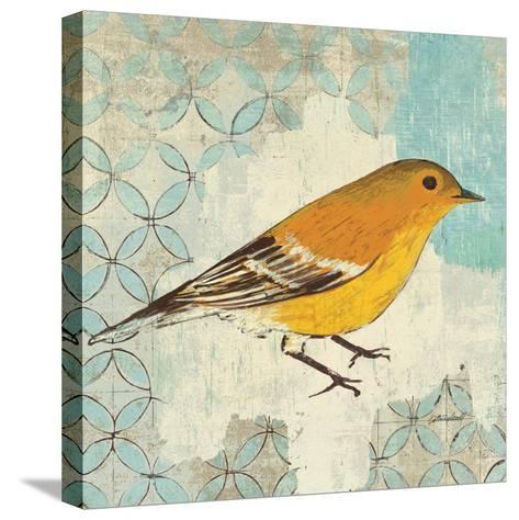 Pine Warbler-Kathrine Lovell-Stretched Canvas Print